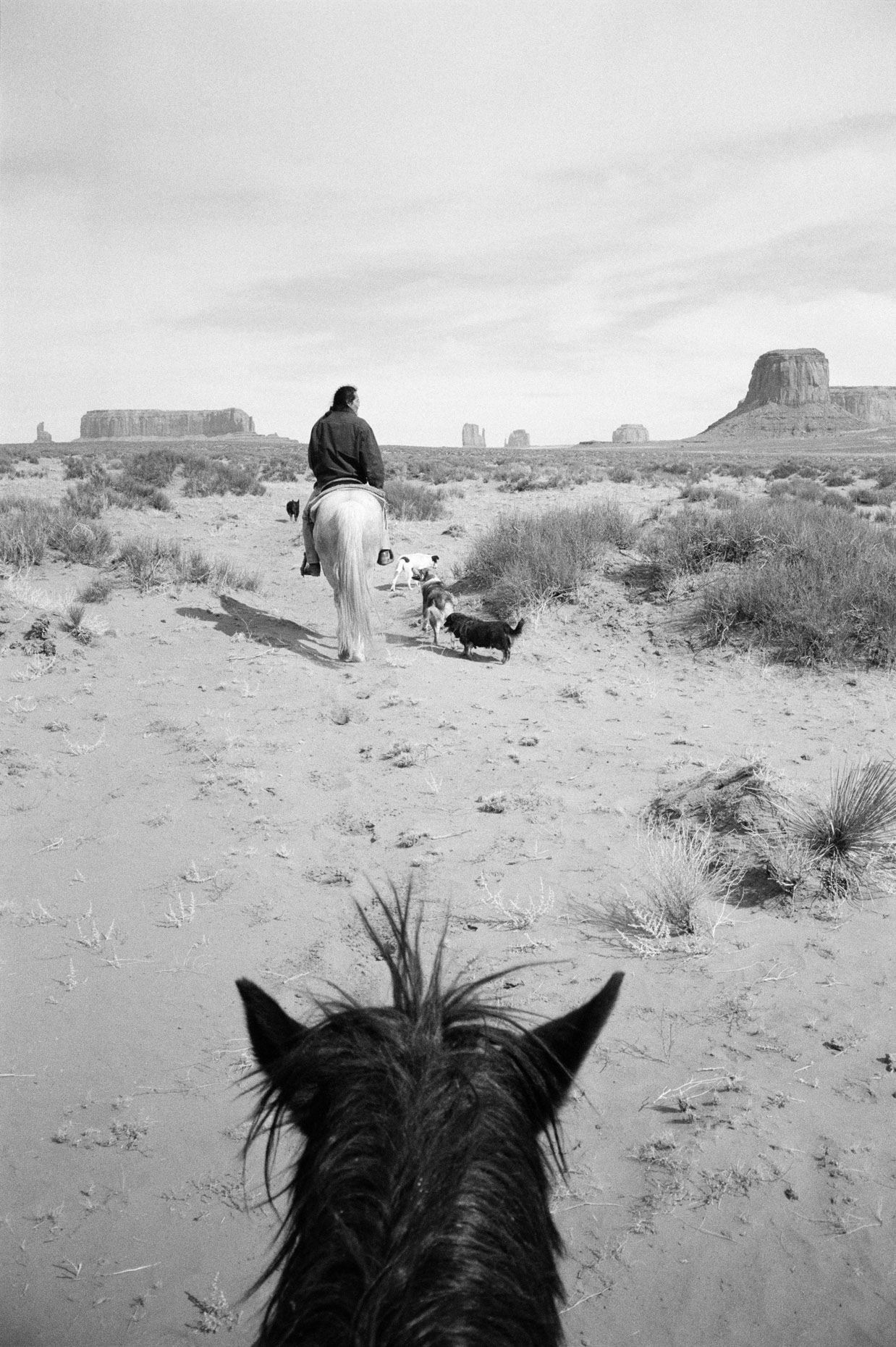 Beau and Trigger, Monument Valley