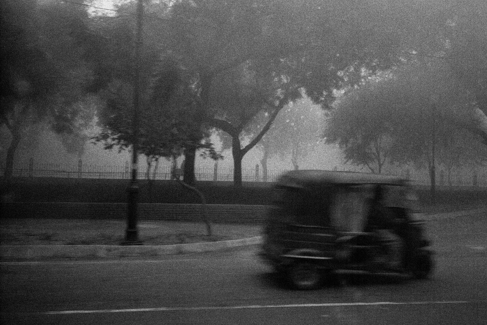 Three-Wheeler in Morning Fog, Delhi